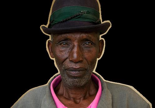 Management of the Elderly
